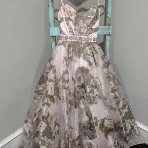 Blush Cinderella Ball gown
